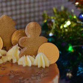 gingerbreadsquarecloseup